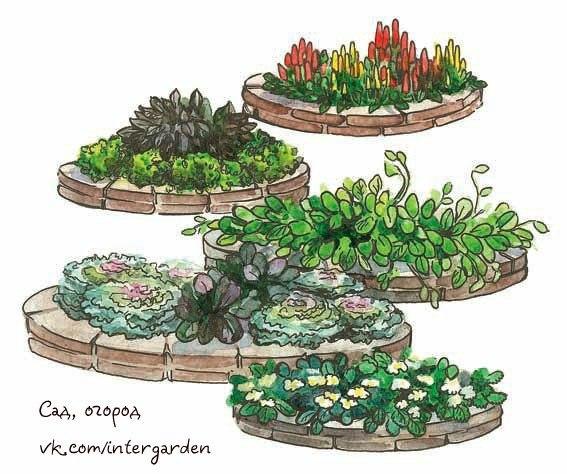 Идеи для овощных, декоративных и пряных цветников  Цветники украсят...