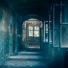"Лайс Барс ""Тёмные коридоры"""