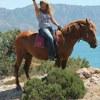 Конные прогулки Севастополь Фиолент 89788000979
