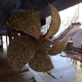 Комплексный ремонт судов