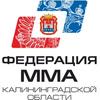 КРОО Федерация Смешанных Боевых Единоборств ММА