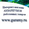 Гурами, купить Аквариумы в Екатеринбурге