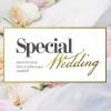 Свадебное агентство Special Wedding