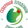 Северный плодовый питомник