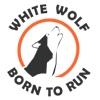 Амуниция для собак Белый волк (прогулки и спорт)