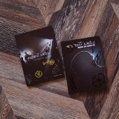 DVD «Новогодняя Акустика» + 2 CD «Live in Aurora»