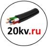20KV.RU