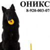 """Площадка """"ОНИКСС"""""""