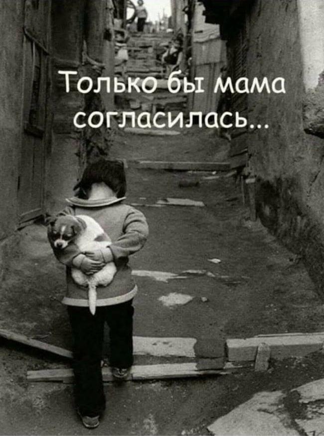 Не убивайте в детях сострадание! Хорошо рассказывать ребенку...