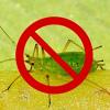 Актара - инсектицид быстрого действия