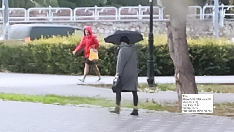 Потепление в Самарской области! Но сначала прольют дожди