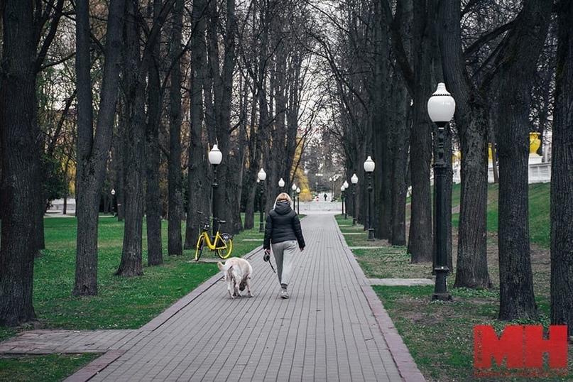 Местами по Беларуси пройдут сильные дожди. Прогноз синоптиков на 2 мая