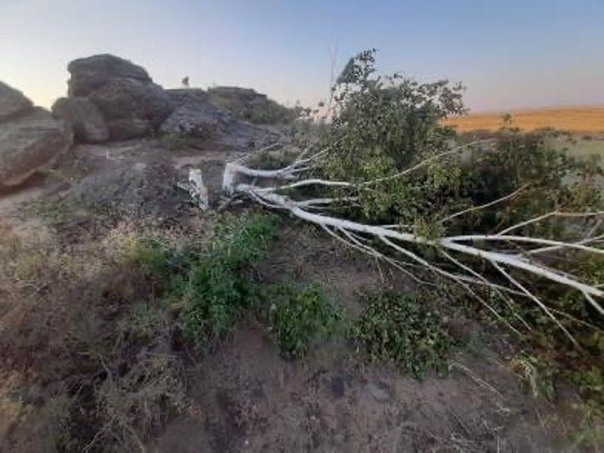 В Соль-Илецке вандалы повредили «Урочище Святой камень»