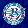 Хоккейный клуб  «Волга» | Ульяновск
