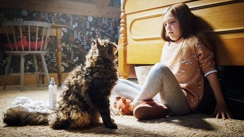 Hовый фильм «Кладбище домашних животных 2» официально раскрыт