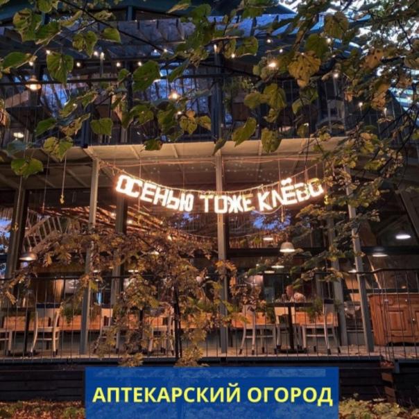Топ-10 самых «фотогеничных» мест Подмосковья, которые стоит посетить этой осенью Москва