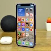 Замена дисплейного модуля iPhone 12