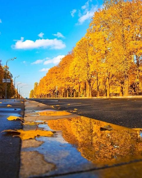 Осень — самый романтичный сезон. Под ногами шуршат золотые листья, мягкое солнце приятно укутывает. Не... Москва