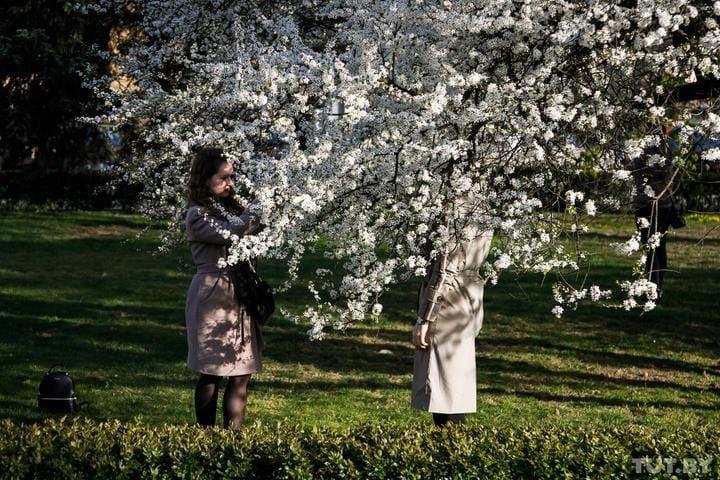 Какой будет погода весной и стоит ли прятать теплые пуховики в марте