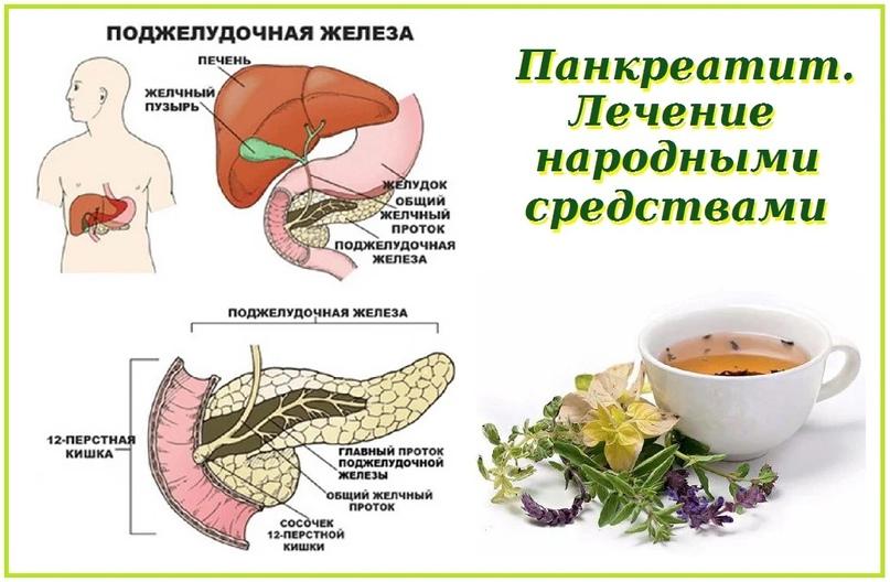 Простые рецепты для лечения панкреатита..
