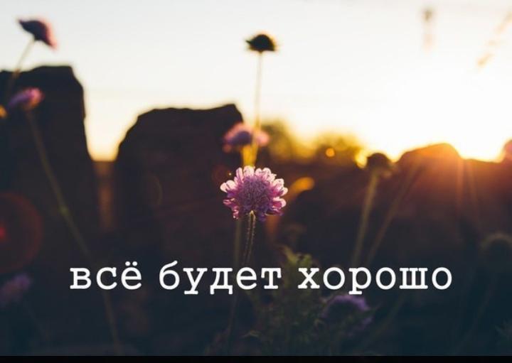 -29599237_457329521