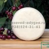 Сыр Сулугуни формовой