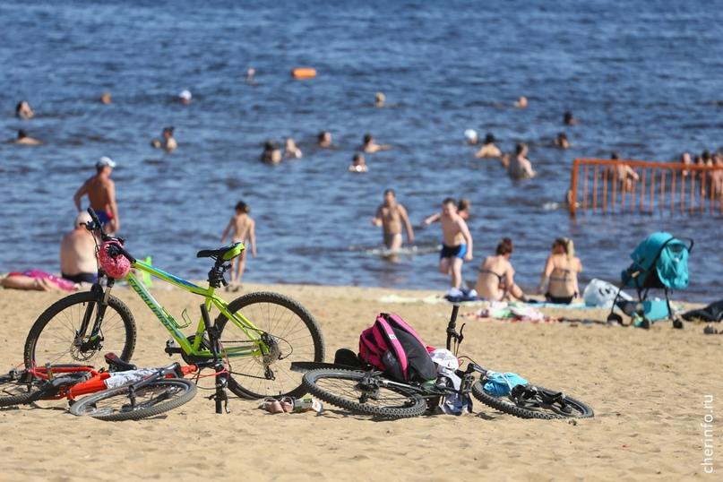 Из пляжей Череповца Ломоносовский стал самым популярным. Ежедневно туда приходят...