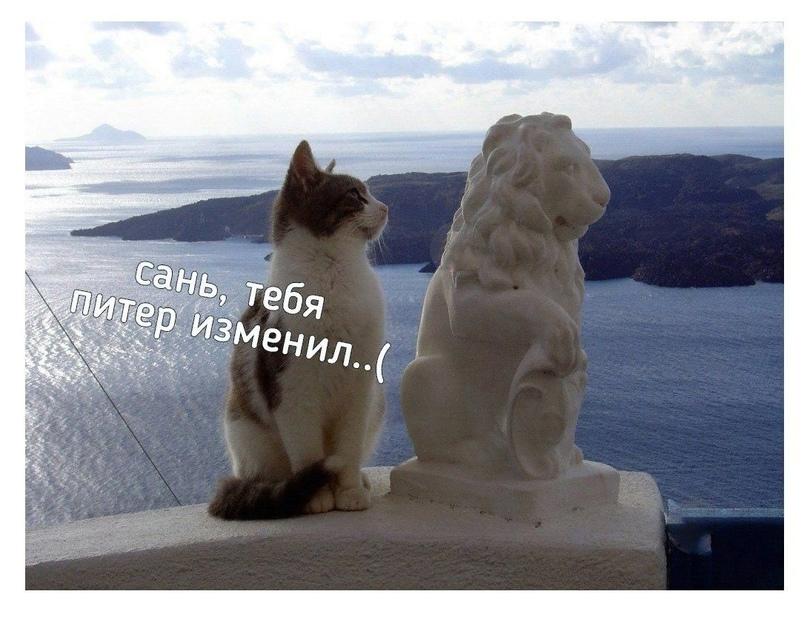 """В свое время Достоевский вывел годную максиму: """"Формула власти это чудо, тайна и..."""