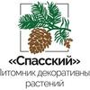 """Ландшафтный питомник """"Спасский"""". г.Рязань"""