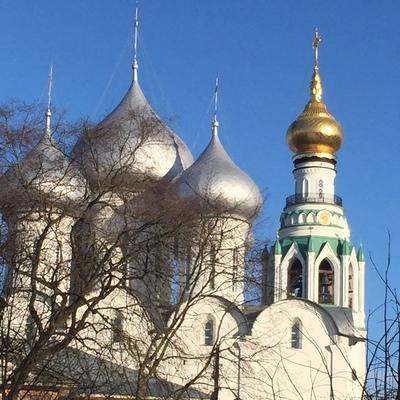Алексей Овсянников, Вологда