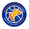 Кибербаскетбольный кубок Единой Лиги ВТБ