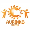 Aurinko camp- Международный языковой лагерь