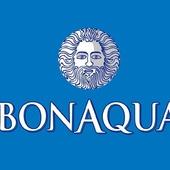 Bon Aqua (1л)
