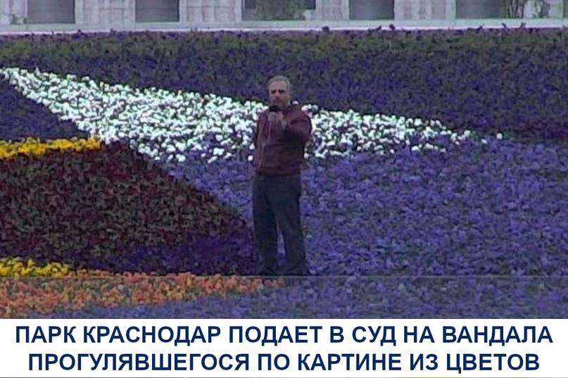 В парке недавно воссоздали из цветов картину художника-авангардиста Александра Р...