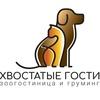 Зоогостиница/груминг Краснодар