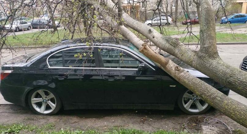 Почти шторм: на Беларусь налетел сильный ветер.