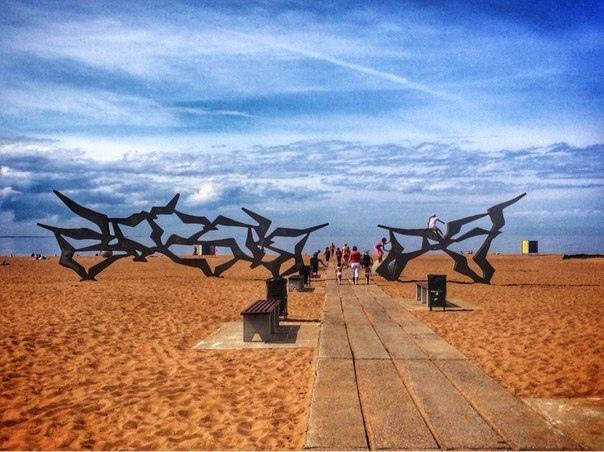 Места в Петербурге и ЛО, где открывается изумительный вид на море