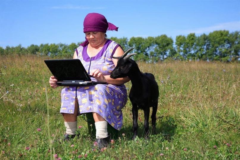 В Ульяновской области мобильный интернет тянут в глубинку