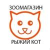 Зоомагазин Рыжий кот