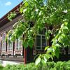 Музей Тавда