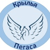 """Интеллектуальный театр """"Крылья Пегаса"""""""