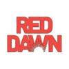 Red Dawn | Страйкбольная команда | Airsoft team