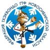 Тхэквондо ГТФ НСО