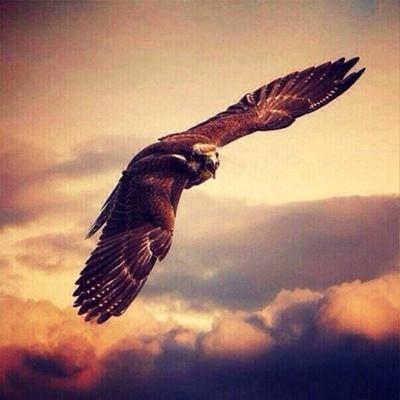 Орел Запад, Кызыл