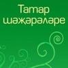 Генеалогия Нижегородских Татар