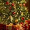 Датские ёлки: до Нового года осталось...
