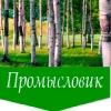 Экотовары в России | Дары леса