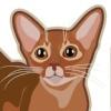 Питомник абиссинских кошек Kotopurrs