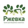 СПб. Приют «Ржевка» для бездомных животных