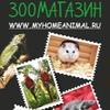 Зеленодольский Зоомагазин, ул. Королева 1А